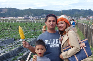 Baguio, Christmas, Strawberry farm